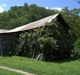Theodore Plemmons barn